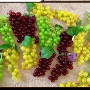 Other - Grapes Decor for bridal shower